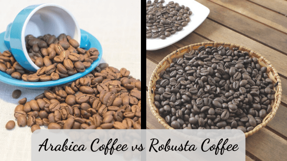 Arabica Coffee vs robusta coffee