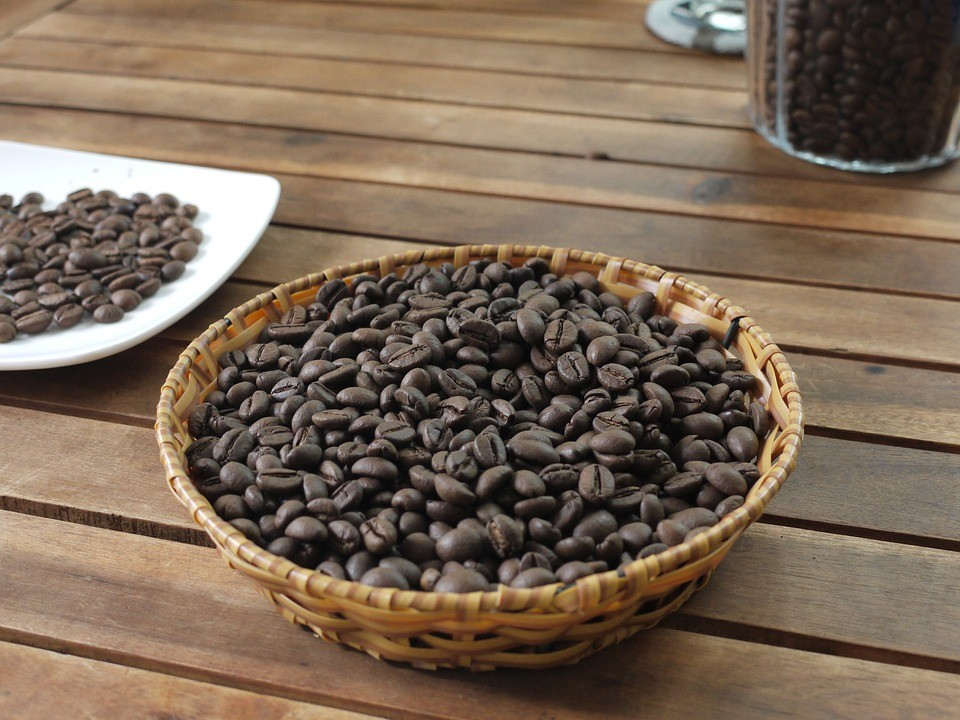 Robusta vs Arabica coffee comparison