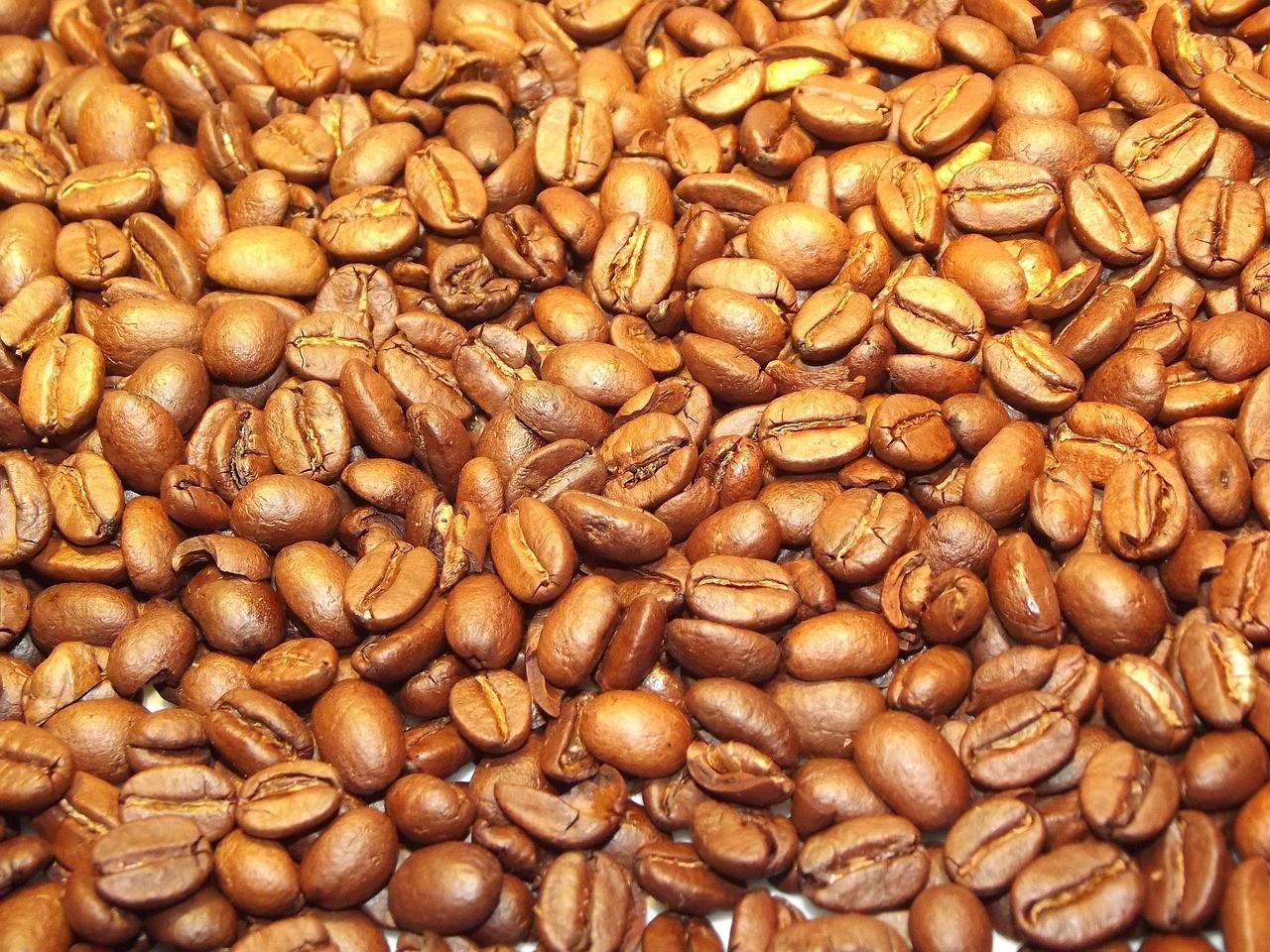 light roast vs dark roast coffee